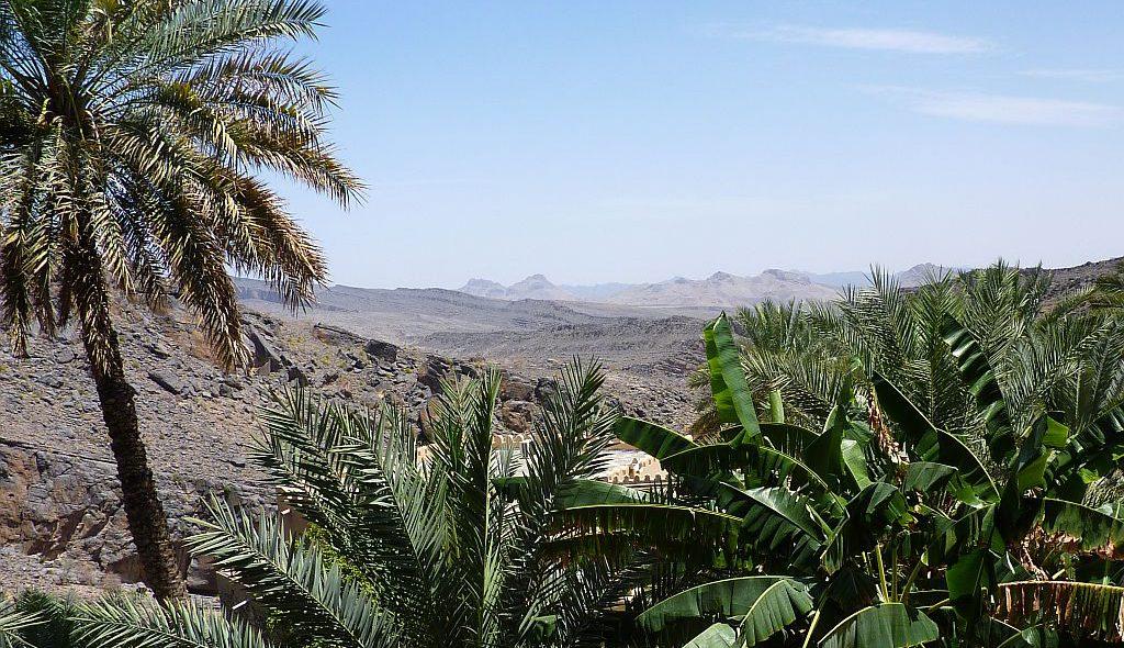 Oman 23