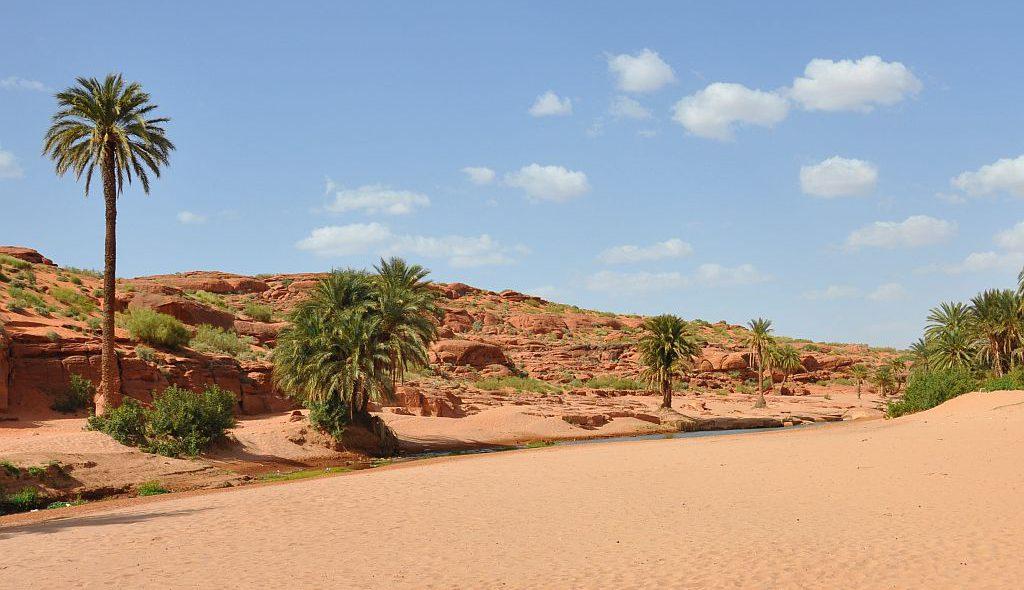 Algerien 59