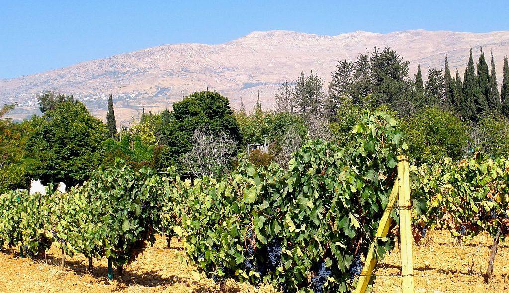 Libanon 025 1024px