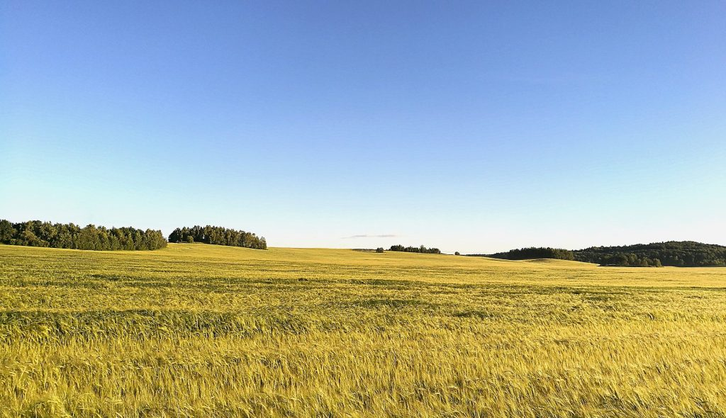 Weissrussland 015 1024px